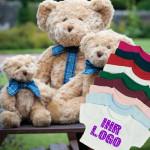 Teddys Stoffbaeren bedrucken besticken
